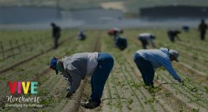 Trabajadores agrícolas de Oregon y el sur de Washington viven su peor semana por el COVID-19