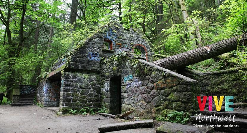 El Forest Park de Portland, uno de los bosques urbanos más grandes y bellos de Estados Unidos