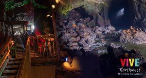 Visita la cueva de los leones marinos, otro tesoro natural de Oregon