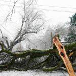Histórica tormenta invernal en zona metropolitana de Portland deja múltiples daños