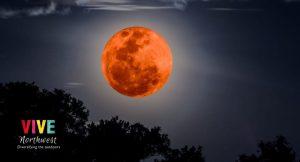 Lee más sobre el artículo La madrugada de este miércoles se podrá ver un eclipse lunar total, llamado 'Luna de sangre'