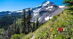 A partir del 25 de junio, visita los nuevos senderos alrededor de Mount Hood Meadows