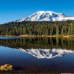 Descubre la infinita belleza del Mount Rainier, la montaña más alta de la Cordillera de las Cascades
