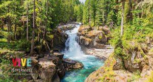 Lee más sobre el artículo Te damos la guía para que recorras los mejores lugares del Mount Rainier