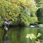 Te presentamos una breve guía sobre los mejores puntos para practicar la pesca en Oregon