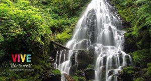 Lee más sobre el artículo Te revelamos algunas de las cataratas menos conocidas que están cerca de Portland