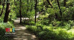 Lee más sobre el artículo ¿Quieres realizar una caminata con tus hijos? Aquí te dejamos algunas opciones